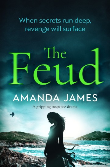 Amanda James - The Feud_cover_high res