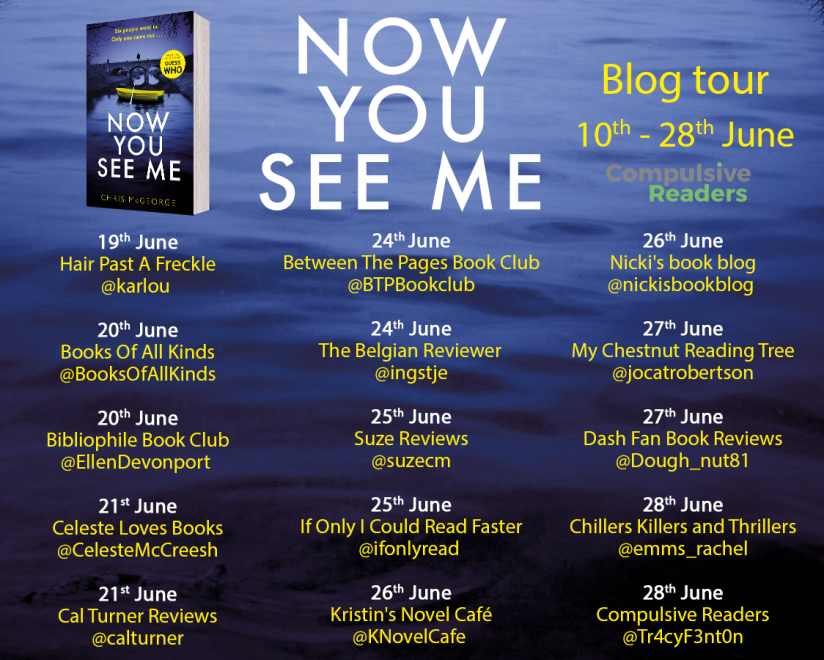 Now You See Me blog tour 2 NEW